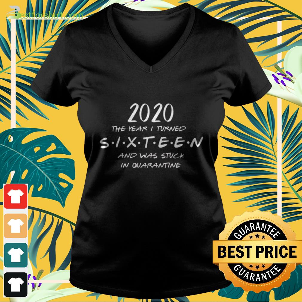 2020 The year I turned sixteen and was stuck in quarantine V neck t shirt