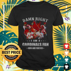 Hot Damn right i am a Cardinals fan now and forever Shirt