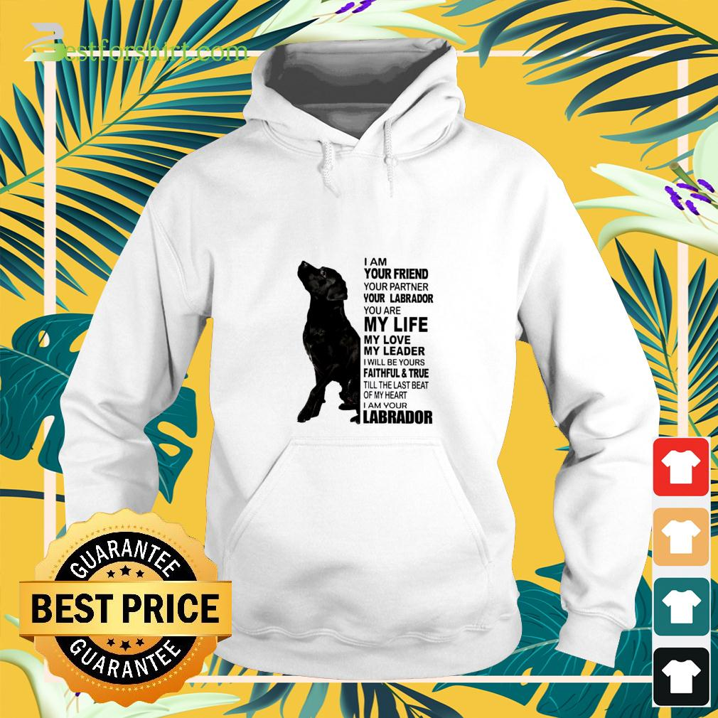 I am your friend your partner your Labrador hoodie